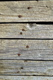 Old wood peeled cracked natural white texture Royalty Free Stock Images