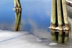 Old wood pilings in freezing water Stock Image
