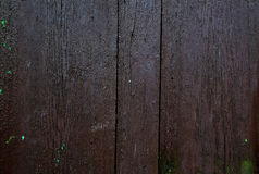 Old wood plank background, vintage Stock Images