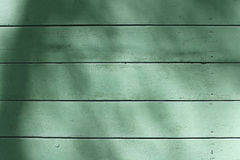 Old wood plank green texture background. Royalty Free Stock Image