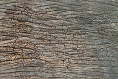 Old wood plank surface background, cracked, grunge, weathered Royalty Free Stock Images