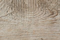 Old Wood Plank Texture on Dimmed Sun stock images