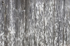 Old wood plank texure Royalty Free Stock Photography