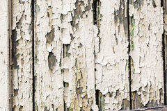 Old wood plank. Royalty Free Stock Image