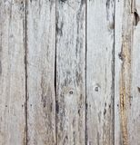 The old wood planks Royalty Free Stock Image