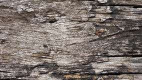 Old wood planks. Royalty Free Stock Photo