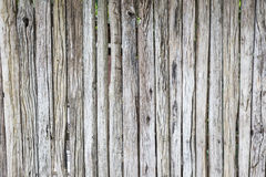 Old wood planks wall texture background Royalty Free Stock Photo