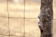 Old Wood Post Wire Fence Royalty Free Stock Photos