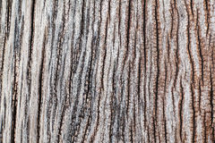 Old wood railway sleepers abstract architecture construction decor vintage wood old surface wood texture natural background design Royalty Free Stock Image