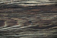 Old wood rings Royalty Free Stock Photos
