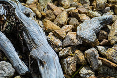 Old wood with rocks Stock Photos