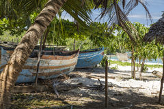 Old wood rusty boats stranded on a tropical beach Stock Image