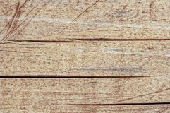 Old wood skin wood texture wood Natural wood background natural.  royalty free stock photo