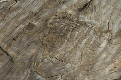 Old wood structire Stock Photography