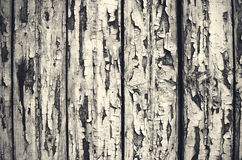 Old wood structure detail stock photography