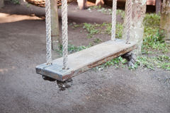 Old wood swing hanged on tree Royalty Free Stock Photo