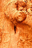 The Old wood texture Stock Images