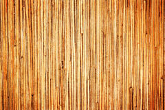 Old Wood Texture. Closeup old brown wood texture for background stock image