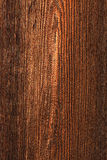 Old wood texture. Closeup background Royalty Free Stock Photos