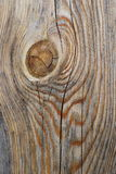Old wood texture. Abstract background. Of aged dark wood Stock Image