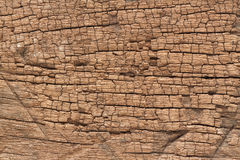 Old wood texture abstract background Stock Photography