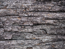 Old wood texture backgroud. Beauty old wood texture backgroud Stock Photography