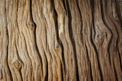 Old wood texture. For background Stock Photography