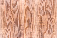 Old wood texture background. Stock Images