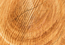 Old Wood Texture for Background Stock Photography