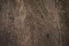 Old wood texture background and empty space for text . royalty free stock photography