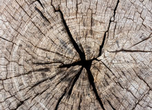 Old wood texture for background Stock Photos
