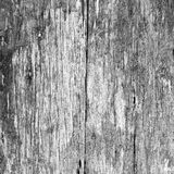 Old wood texture  background Floor surface (White ฿ Black) Stock Photos