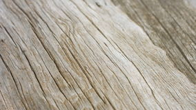 Old wood texture background stock video