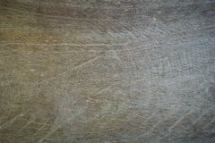 Old wood texture background. Floor surface Stock Image