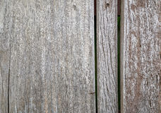 Old wood texture. Old wood background with shadows stock images