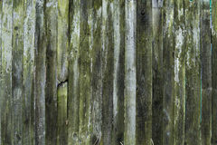 Old wood texture background, wooden board, rustic fence. Wood texture background, wooden board, rustic fence Stock Photography