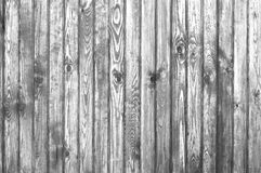 Old wood texture. Black and white Stock Images