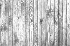 Old wood texture. Black and white Stock Photography