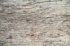 Old wood texture. Brown close-up.  Royalty Free Stock Photography