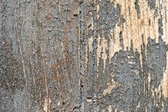 Old wood texture with cracked paint Royalty Free Stock Photo