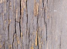 Old grey wood with cracks texture stock photography