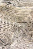 Old wood texture. Cut a wooden board Stock Photography