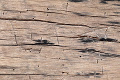 Old wood texture. Stock Image