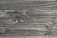 Old wood texture. Old door with old wood texture royalty free stock photography