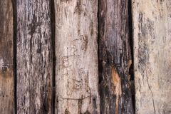 Old wood texture. Grunge oak planks. Weathered wooden boards. Rural fence. Hardwood background. Rough wooden panels background stock photos