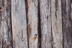 Old wood texture. Grunge oak planks. Weathered wooden boards. Rural fence. Hardwood background. Rough wooden panels background royalty free stock image
