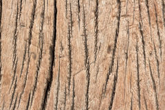 Old wood texture material background Stock Images