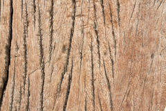 Old wood texture material background Stock Photos