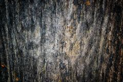 The old wood texture with natural patterns and cracks on the surface as background. Darken from center. Stock Photos
