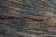 The old wood texture with natural patterns and cracks on the surface as background. Darken from center. Royalty Free Stock Photo